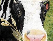 Cow No. 0652 Print by Carol McCarty