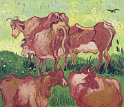 Farming Painting Prints - Cows Print by Vincent Van Gogh