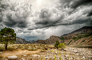 Eastern Sierra Prints - Dark Skies at Grant Lake Print by Cat Connor