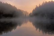 Pink Dawn Posters - Dawn on the Yellowstone River Poster by Sandra Bronstein