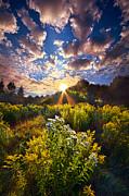 Phil Koch - Daybreak