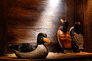 Hunting Cabin Art - Decoys in Old Hunting Cabin by Olivier Le Queinec
