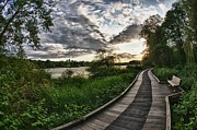 Scott Holmes - Deer Lake Boardwalk