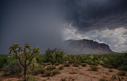 The Superstitions Prints - Desert Rain  Print by Saija  Lehtonen