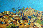 Beautiful Scenery Paintings - Desert Tree in Blazing Sun by Gerhardt Isringhaus
