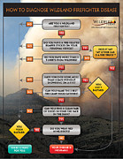Bill Gabbert - Diagnosing Wildland...