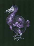 Dodo Bird Framed Prints - Dodo Framed Print by Suzette Broad