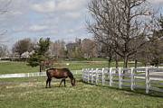 Jack R Perry Metal Prints - Donamire Farm Metal Print by Jack R Perry