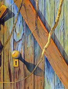 Barn Door Painting Prints - Door In Skull Valley Print by Robert Hooper