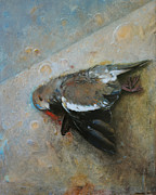 Cap Pannell Art - Dove by Cap Pannell