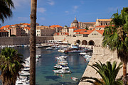 Tile Roof Framed Prints - Dubrovnik Harbor Framed Print by Brian Jannsen