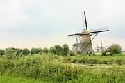 Dutch Landscape Framed Prints - Dutch Landscape with Windmills Framed Print by Carol Groenen