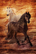 Horse Images Digital Art Prints - Ebony and Ivory Print by Melinda Hughes-Berland
