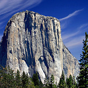 El Capitan Yosemite National Park Print by Nadine and Bob Johnston