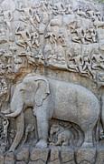 Elephant Sculpture At Mamallapuram  Print by Robert Preston