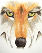 Pack Animal Drawings Posters - Eyes of the Wolf Poster by Deborah Ross