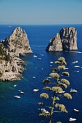 Dany Lison Framed Prints - Faraglioni in Capri Framed Print by Dany Lison