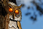 Bird Metal Prints - Faux Owl with Golden Eyes Metal Print by Amy Cicconi