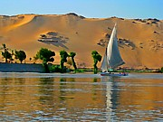 Photographers Fine Art Painting Prints - Felluca on the Nile Print by John Malone