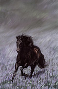 Black Horse Pastels Prints - Field of Dreams Print by Kim McElroy
