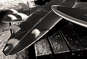 Clemente Prints - Fins and Boards Print by Ron Regalado