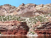 Rock Wall Pastels Posters - Flaming Gorge pink cliffs Poster by Brian Shaw