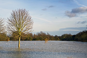 Cornfield Prints - Flooded Field In Rural Essex Print by Fizzy Image