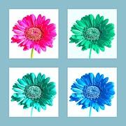 John Tidball  - Flower Collage