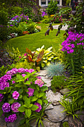 Garden Flowers Photos - Flower garden by Elena Elisseeva
