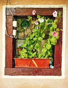 Travel Destinations Paintings - Flowers in the Window by Odon Czintos