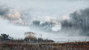 Country Scenes Metal Prints - Foggy Morning Metal Print by Bill  Wakeley