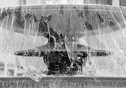 Colin Hogan - Fountain - ref 5363