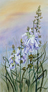 Foxglove Flowers Paintings - Foxglove in the Scottish Mist by Ruth Bodycott