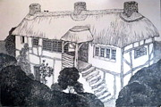 Diane Fine Drawings - Garden Cottage by Diane Fine