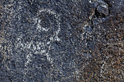 Kyrgyzstan Photos - Goat petroglyph engraved on boulders at Cholpon Ata in Kyrgyzstan by Robert Preston