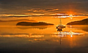 Yellow Sailboats Posters - Golden  Sunrise Poster by Robert Bales