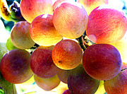 Grape Digital Art Originals - Grapes In Sunlight by Laszlo Slezak