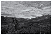 Canada Landscape Prints - Guardians Of The Valley Print by Priska Wettstein