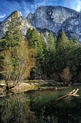 River Park Framed Prints - Half Dome Framed Print by Cat Connor