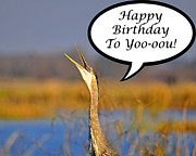 Al Wild Card Posters - Happy Heron Birthday Card Poster by Al Powell Photography USA