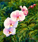 Mary Giacomini - Hawaiian orchid