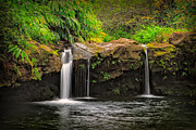 Green Foliage Posters - Hawaiian Waterfall Poster by Doug Oglesby