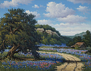 Live Oak Trees Paintings - Hill Country Treasures by Kyle Wood