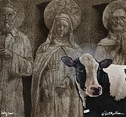 Holy Cow Paintings - Holy Cow... by Will Bullas
