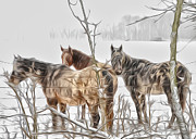 Brian Mollenkopf - Horses in the Snow