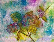 Dried Hydrangeas Prints - Hydrangea Print by Janet Immordino