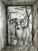 Deer Pastels Posters - I Was Framed Poster by Jerry Padilla