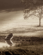 Serene Prints - In Quiet Solitude Print by Tom Mc Nemar