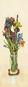 Nan Wright Prints - irises in Vase Print by Nan Wright