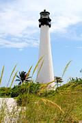 Cape Florida Lighthouse Art - Key Biscayne Lighthouse by Carey Chen